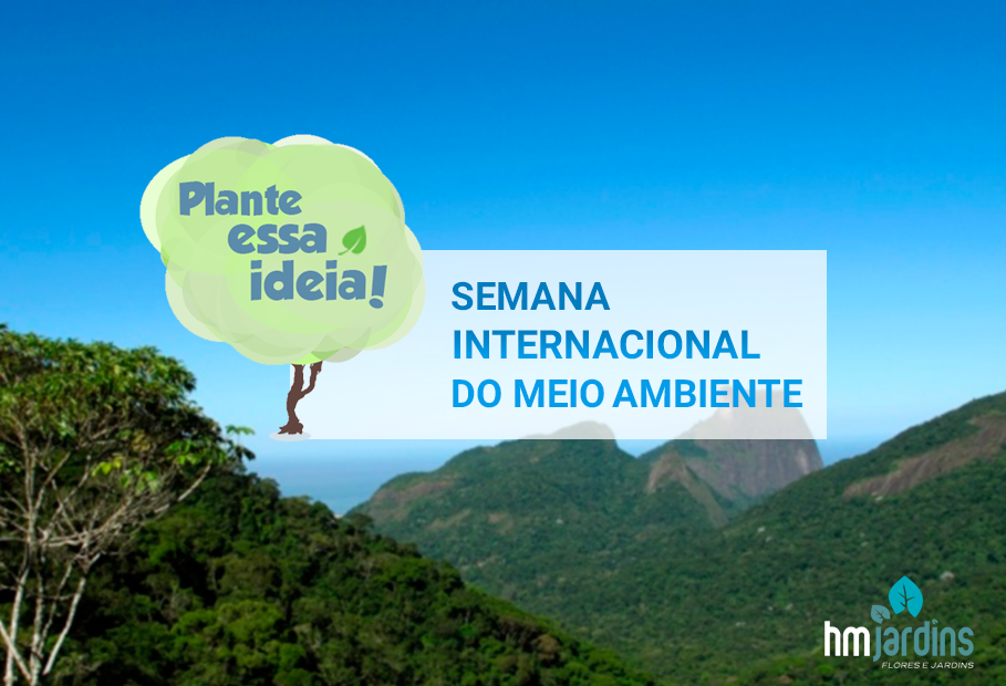 semana internacional meio ambiente