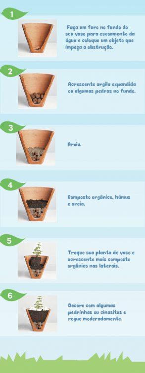 dicas-plantio