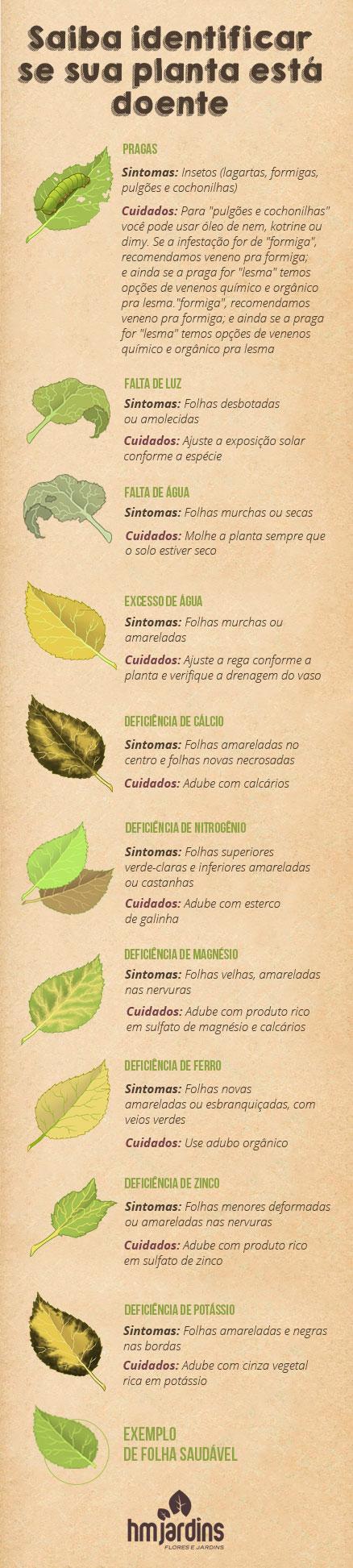 plantas_doentes