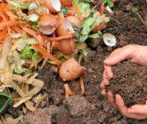 """Resíduos orgânicos: no processo de compostagem utilize cascas de frutas, verduras, etc. Conheça mais sobre compostagem acessando nosso post """"Faça composteira caseira e tenha o melhor adubo""""."""