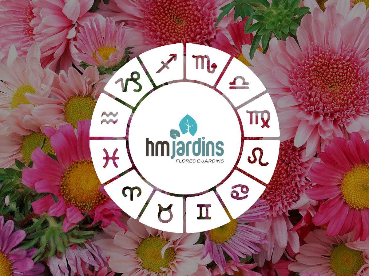 flores-signos-hm