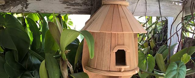 casa-passarinho