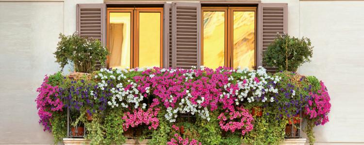 varanda-com-flores-e-plantas