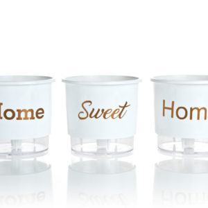 Vasos Autoirrigáveis - Home Sweet Home