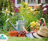 Ferramentas básicas para cuidar do jardim