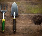 Ferramentas básicas para cuidar do jardim – Garfo largo