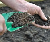 Ferramentas básicas para cuidar do jardim – Pá pequena e larga