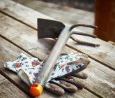 Ferramentas básicas para cuidar do jardim – Luvas