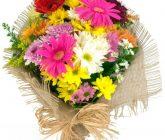 flor-do-campo2