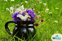flores-da-primavera-capa-logo