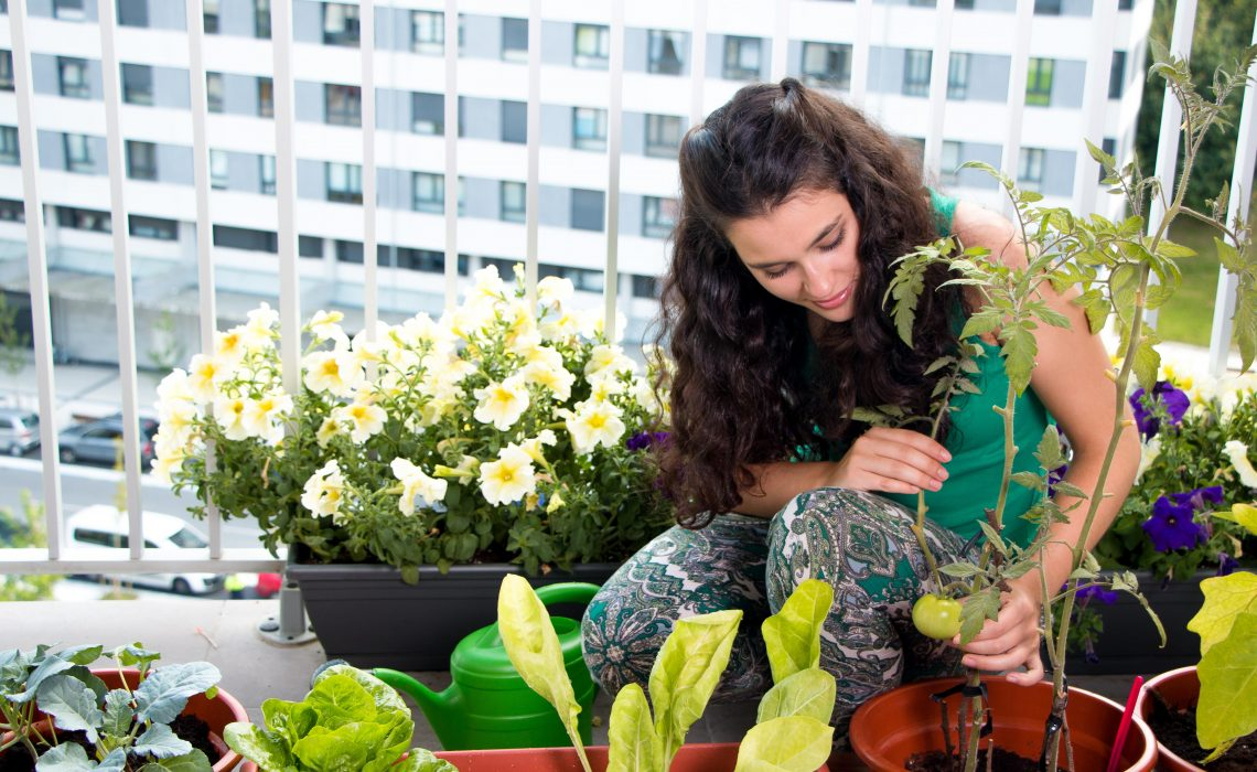 jardinagem-combate-depressao