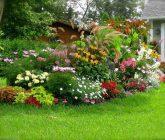 jardim-casa-de-vo